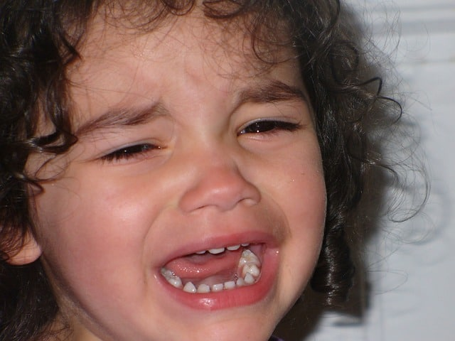 toddler cries about everything