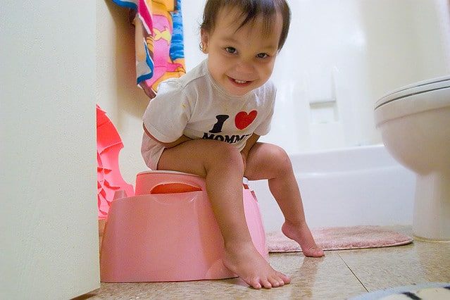 How To Get Your Toddler To Poop In The Potty