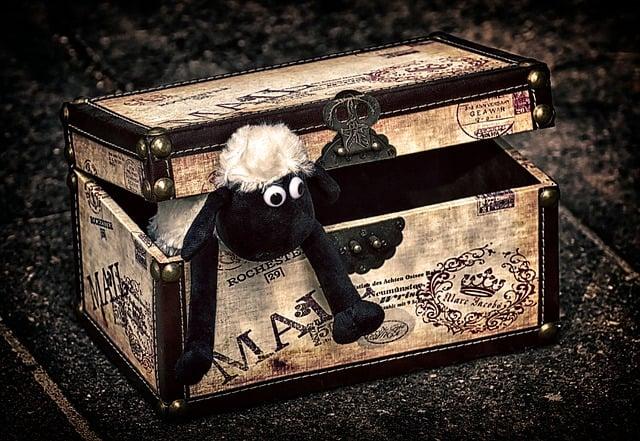 Best Toy Box 2020