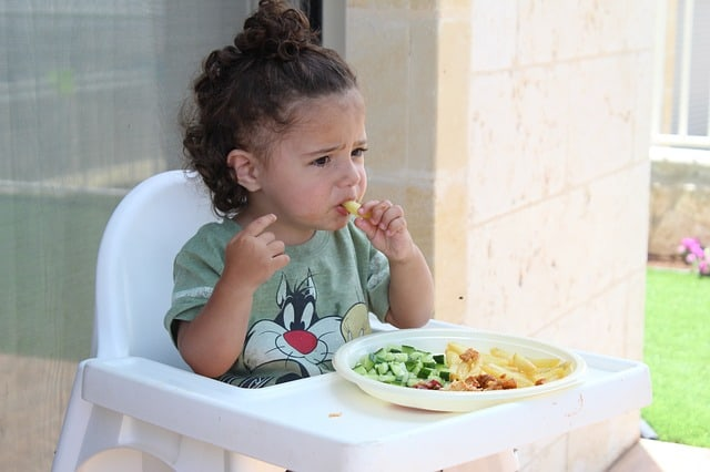 Top 5 Toddler Booster Eating Seat for Your Child